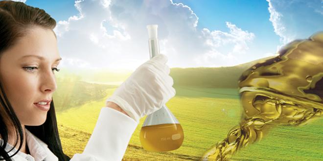 Vegetable-based forming oils