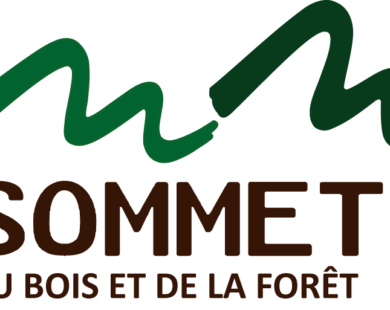 logo-sommet-bois-foret